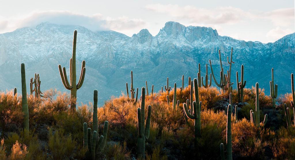 FILLED – Regional Administrator Surgery Center (Arizona)